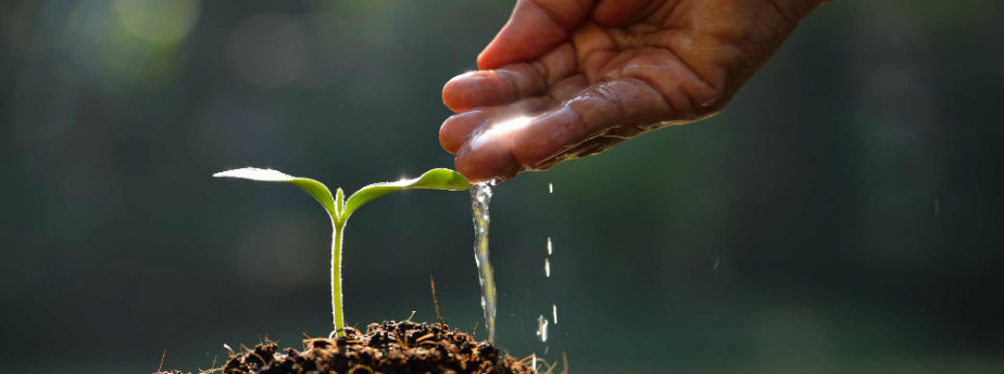 February - Laying Hold of our Seeds for Covenant Greatness
